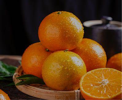 柑橘系ポリフェノール
