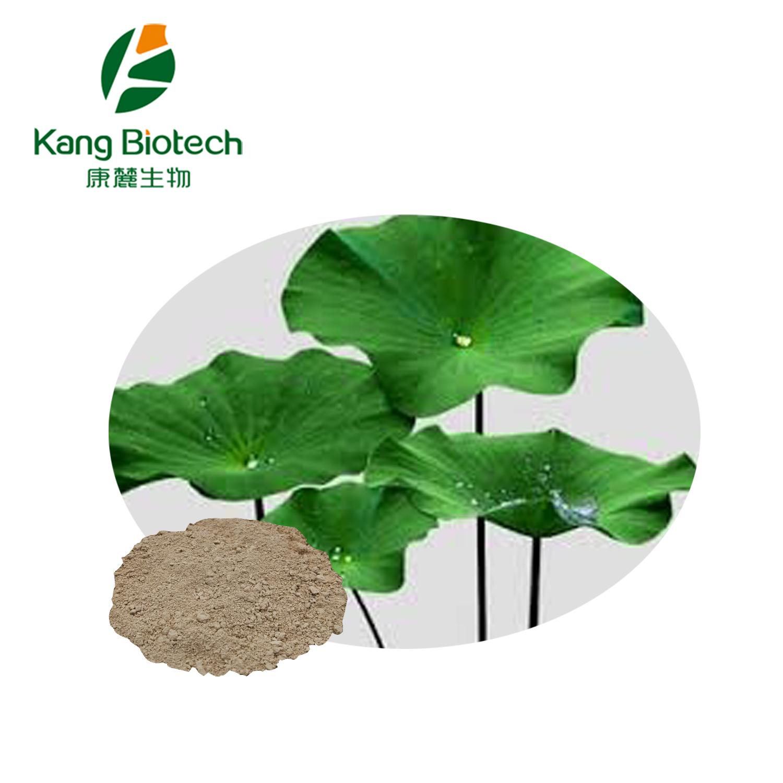 Lotus Leaf Extracts(Nuciferine)